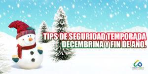 Tips de seguridad temporada decembrina y año nuevo.