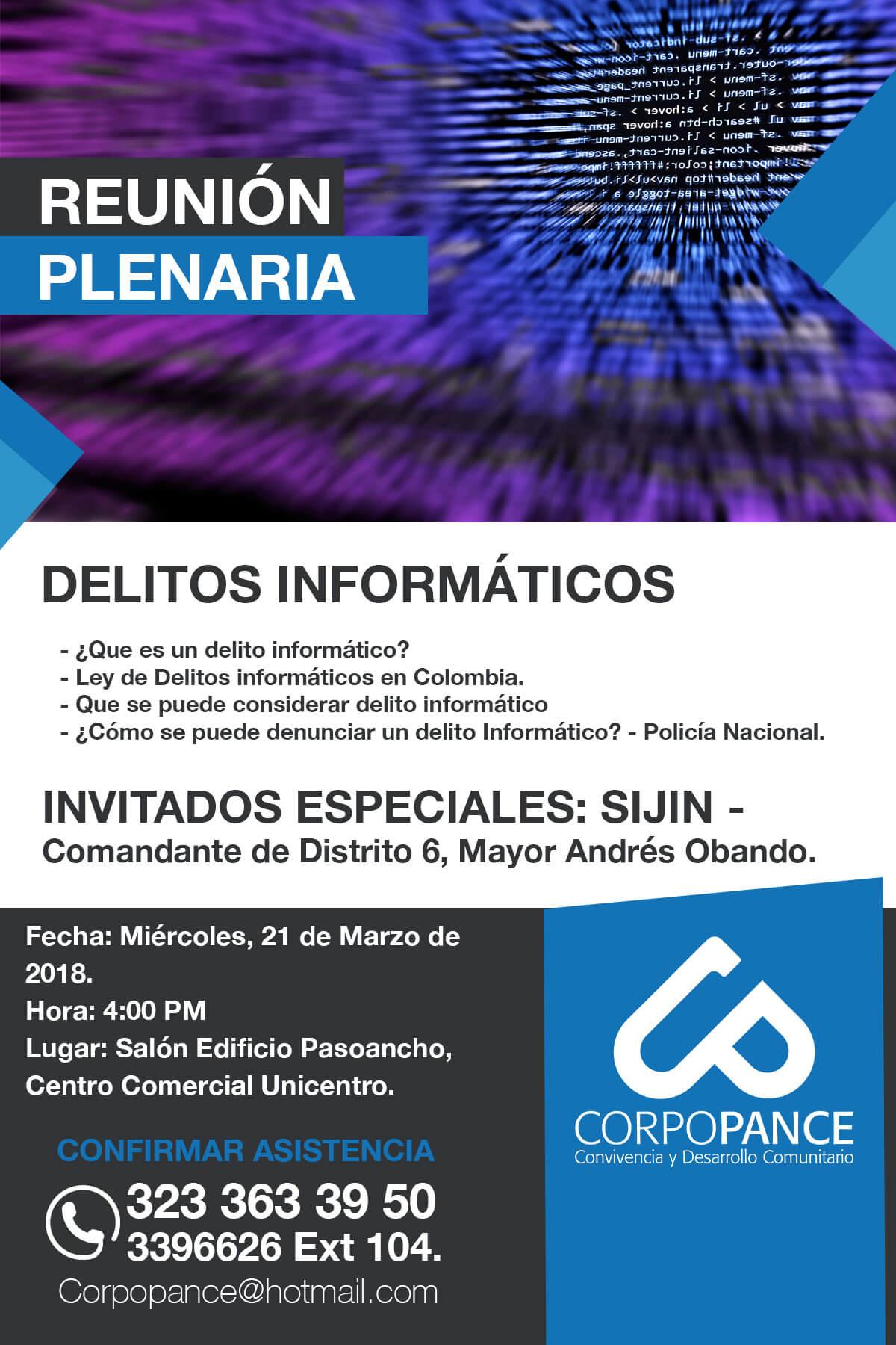Reunión Plenaria: Delitos Informaticos que son y como prevenirlos