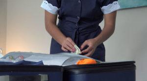 Falsas empleadas domésticas, involucradas en actos delictivos