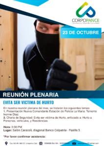 Reunión Plenaria Octubre 2018